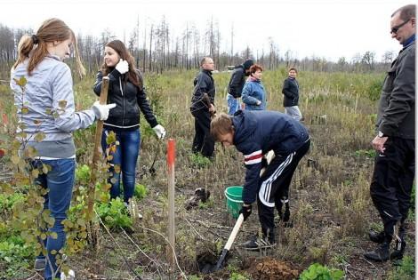 В лесу фото студенты 84033 фотография